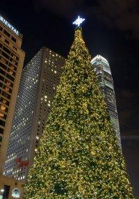 Post Thumbnail of Navidad