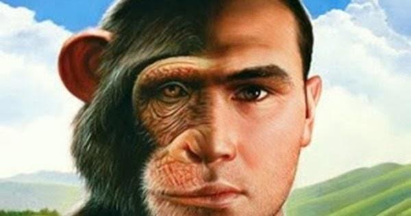 Resultado de imagen para imagenes el hombre es un animal
